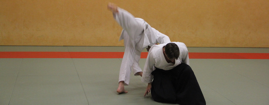 Aikido is rollen